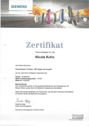 zertifikat_140403_tinnitus_nk