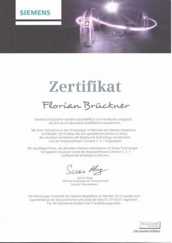 zertifikat_141030_fb_siemens