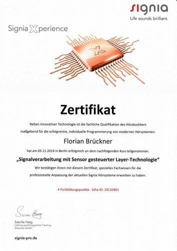 zertifikat_191105_fb_signia
